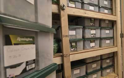 Soldotna Alaska Recreational Marijuana Dispensary